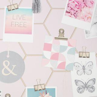 Clip Frames Pink Wallpaper - TBC