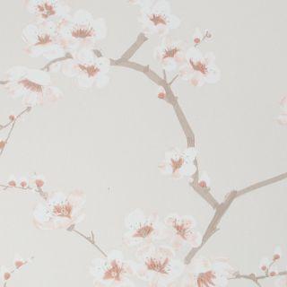 Fresco Apple Blossom Burnt Orange Wallpaper - 108291