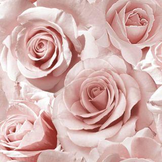 Muriva Madison Glitter Wallpaper 139521 - Feature Wall Rose Floral Rasberry