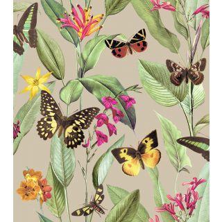 Papillon - Gold 276465