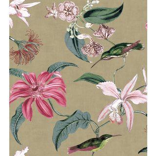 Tropique Hummingbird - Gold 276588