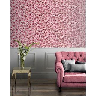 Rose Wall Raspberry 297108