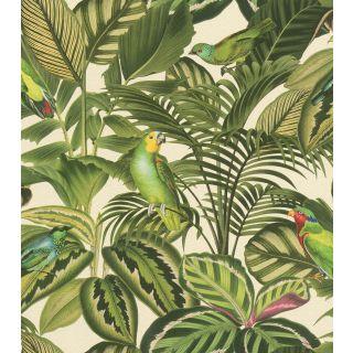 Tropical Parrots 439533
