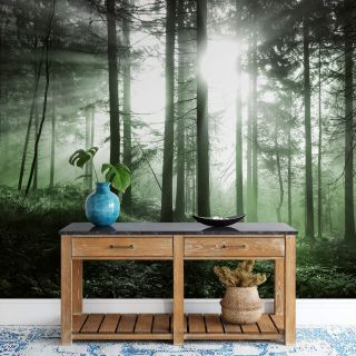 Sun Rays, Nature Forest Theme - Green - Matt Finish 5181-8