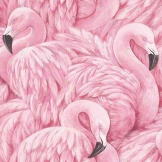 Rasch Pink Flamingo Birds Quality Feature Designer Wallpaper 277890