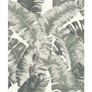 Textured Palm - Khaki 535600