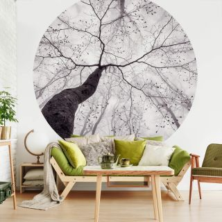 Inside the Trees Nature Forest Theme 5413 -R