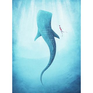 Rivers The Whale shark Kids Room Theme 5470-4