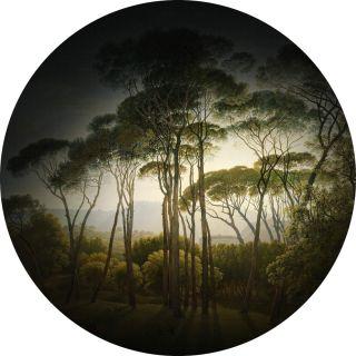 Classic Italian Landscape with umbrella Pines 5491-R