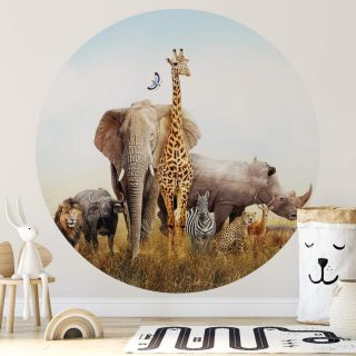 African Elephant Animal Kids room theme 5521-R