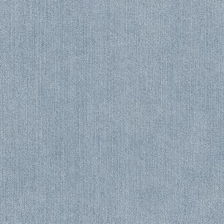 Denim Blue 668600
