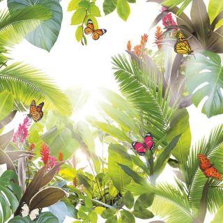 Amazonia Citrus 690300 Rainforest Wallpaper