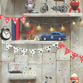 Boy's Life 696000 Bookshelf Wallpaper