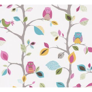 AS-856326 Birds/Owls Colourful Nature Kids Wallpaper
