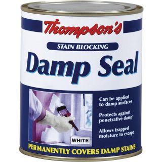 Thompsons Damp Seal 250ml
